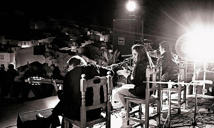 flamenco-torres